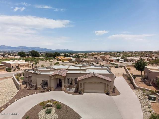 8003 Renoir Loop, Las Cruces, NM 88007 (MLS #1901991) :: Steinborn & Associates Real Estate
