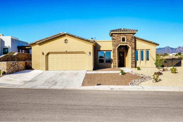 3044 Chippewa Summit Drive, Las Cruces, NM 88011 (MLS #1902001) :: Steinborn & Associates Real Estate