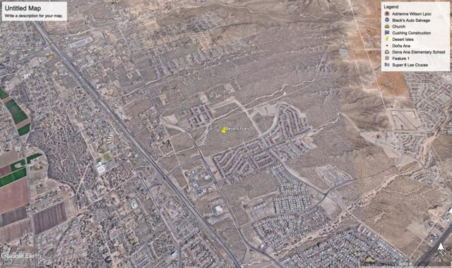 4750 Del Rey Boulevard, Las Cruces, NM 88012 (MLS #1902009) :: Better Homes and Gardens Real Estate - Steinborn & Associates