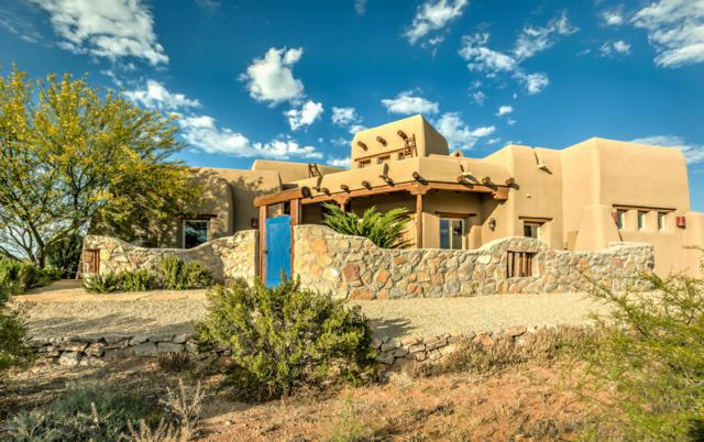 4325 Sheep Springs Road, Las Cruces, NM 88011 (MLS #1902028) :: Steinborn & Associates Real Estate