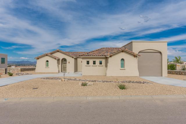 1604 Arco De Goya, Las Cruces, NM 88007 (MLS #1902029) :: Steinborn & Associates Real Estate