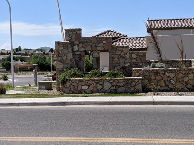 2985 Maddox Loop, Las Cruces, NM 88011 (MLS #1902037) :: Steinborn & Associates Real Estate