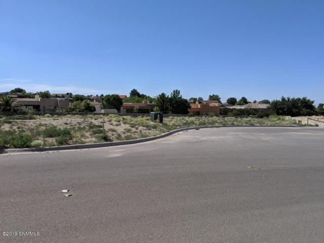 2808 Maddox Loop, Las Cruces, NM 88011 (MLS #1902039) :: Steinborn & Associates Real Estate