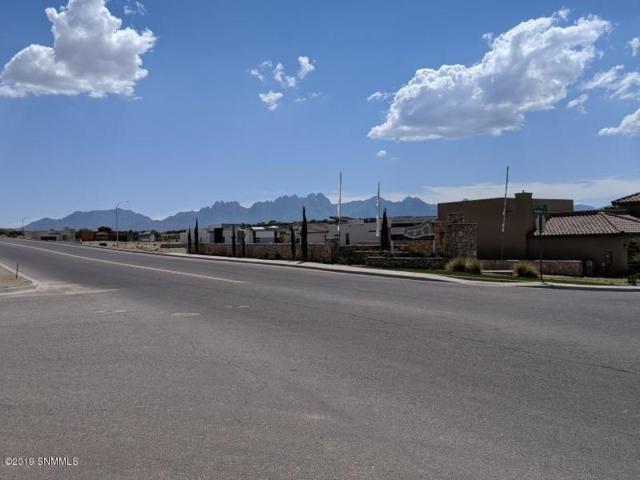 2892 Maddox Loop, Las Cruces, NM 88011 (MLS #1902040) :: Steinborn & Associates Real Estate