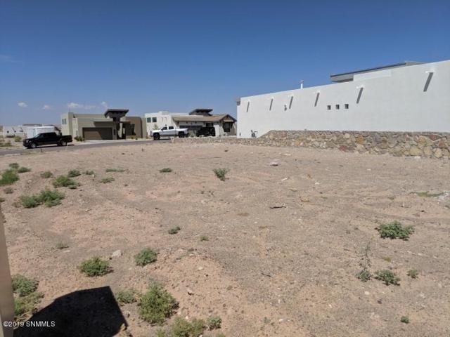 2904 Pacifico Court, Las Cruces, NM 88011 (MLS #1902057) :: Steinborn & Associates Real Estate