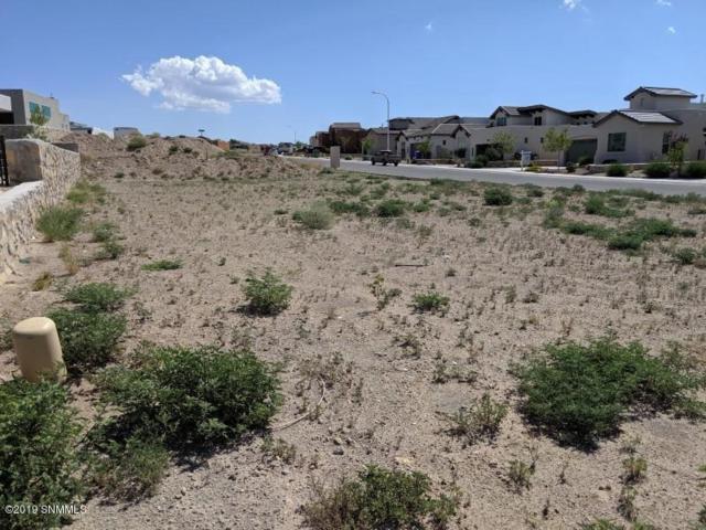 2906 Maddox Loop, Las Cruces, NM 88011 (MLS #1902058) :: Steinborn & Associates Real Estate