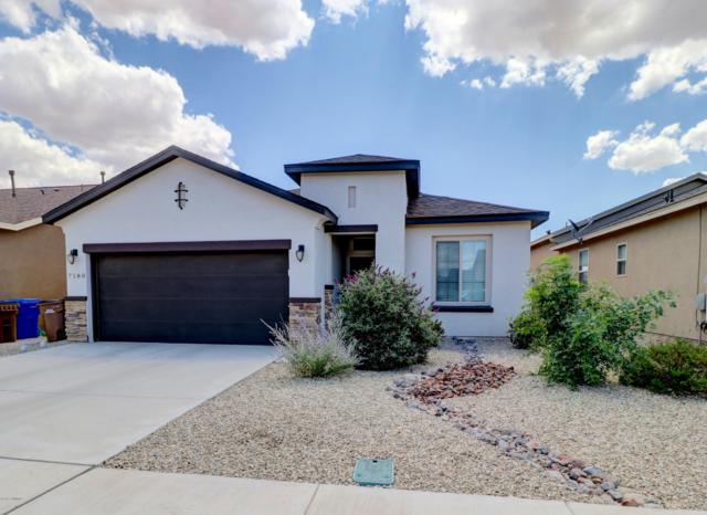 7180 Tapadero Street, Las Cruces, NM 88012 (MLS #1902060) :: Steinborn & Associates Real Estate