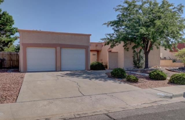 3220 Jupiter Road, Las Cruces, NM 88012 (MLS #1902070) :: Steinborn & Associates Real Estate