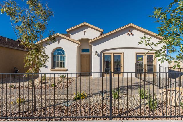 4833 Califa Avenue, Las Cruces, NM 88012 (MLS #1902085) :: Steinborn & Associates Real Estate