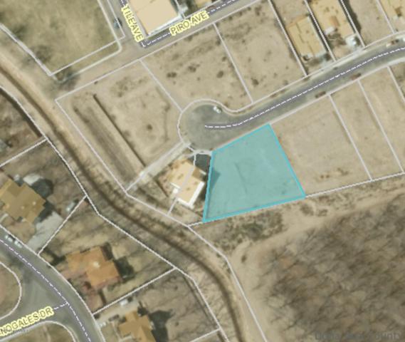 TBD Wall Avenue, Las Cruces, NM 88001 (MLS #1902091) :: Steinborn & Associates Real Estate