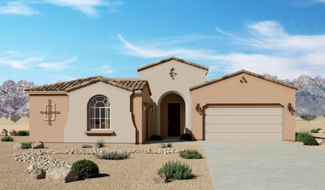 3716 Santa Flora Court, Las Cruces, NM 88012 (MLS #1902101) :: Steinborn & Associates Real Estate