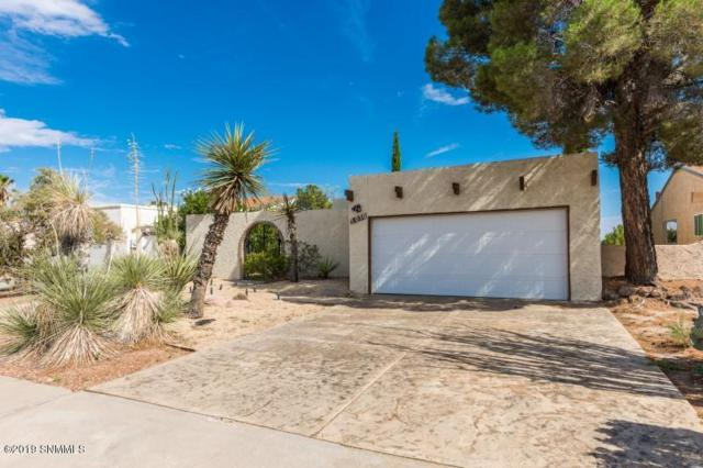 3050 Executive Hills Road, Las Cruces, NM 88011 (MLS #1902103) :: Steinborn & Associates Real Estate