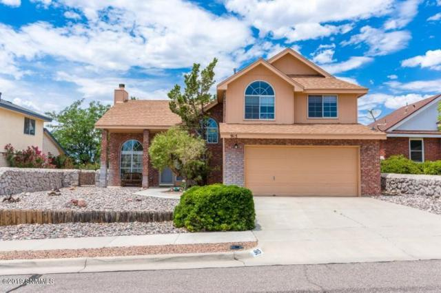 915 Stagecoach Drive, Las Cruces, NM 88011 (MLS #1902113) :: Steinborn & Associates Real Estate