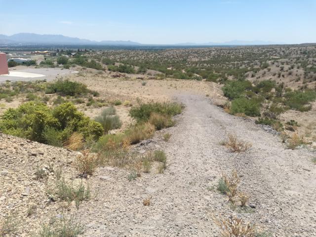 514 Lark Spur Way, Las Cruces, NM 88007 (MLS #1902121) :: Steinborn & Associates Real Estate