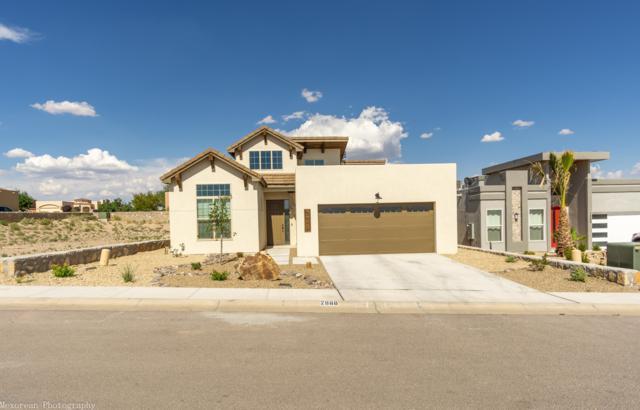 2888 Maddox Loop, Las Cruces, NM 88011 (MLS #1902124) :: Steinborn & Associates Real Estate