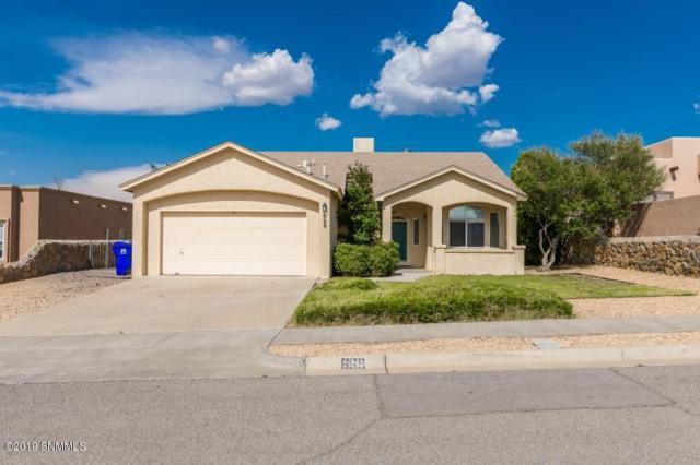 669 Canyon Verde, Las Cruces, NM 88011 (MLS #1902138) :: Steinborn & Associates Real Estate