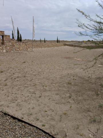 2919 Bink Place, Las Cruces, NM 88011 (MLS #1902148) :: Steinborn & Associates Real Estate