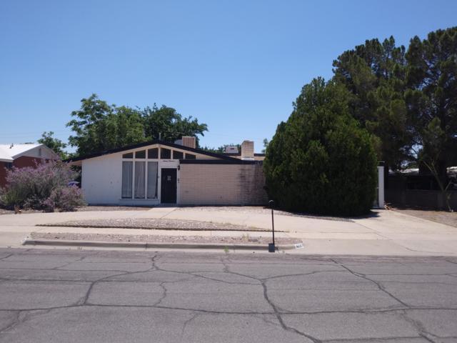 1600 Camino Del Rex, Las Cruces, NM 88001 (MLS #1902156) :: Steinborn & Associates Real Estate