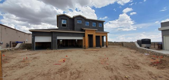 3900 Ringneck Drive, Las Cruces, NM 88001 (MLS #1902173) :: Steinborn & Associates Real Estate