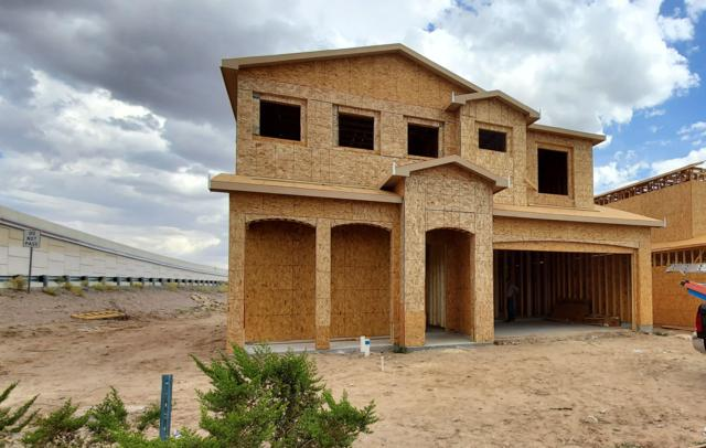 3920 Ringneck Drive, Las Cruces, NM 88001 (MLS #1902177) :: Steinborn & Associates Real Estate