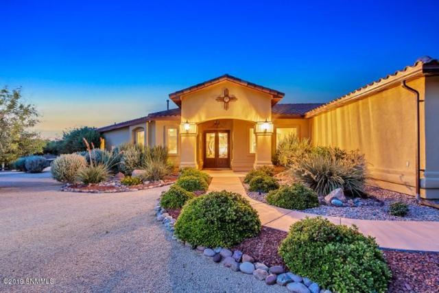 3101 Snow Road, Las Cruces, NM 88005 (MLS #1902207) :: Arising Group Real Estate Associates
