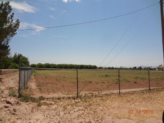 0 Stallion Road, La Mesa, NM 88044 (MLS #1902215) :: Steinborn & Associates Real Estate