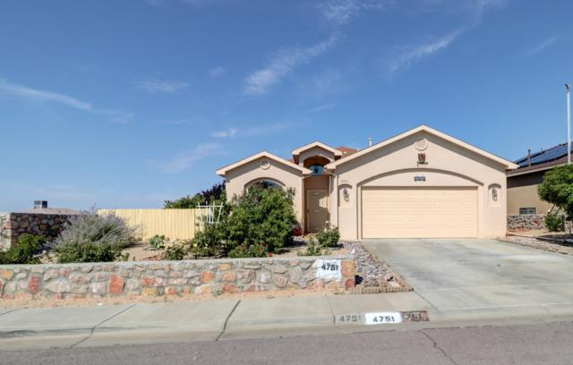 4751 Kerry Ann Place, Las Cruces, NM 88012 (MLS #1902233) :: Steinborn & Associates Real Estate