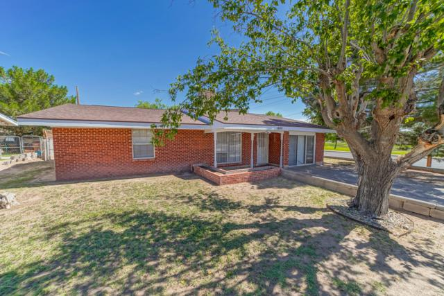 1000 Wofford Drive, Las Cruces, NM 88001 (MLS #1902250) :: Steinborn & Associates Real Estate