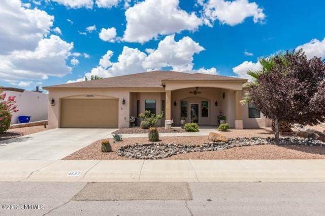4697 Mesa Rico Drive, Las Cruces, NM 88011 (MLS #1902270) :: Steinborn & Associates Real Estate