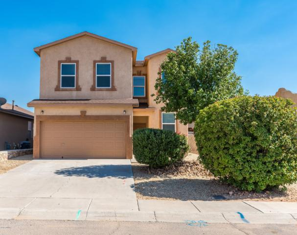4944 Ortega Road, Las Cruces, NM 88012 (MLS #1902282) :: Steinborn & Associates Real Estate