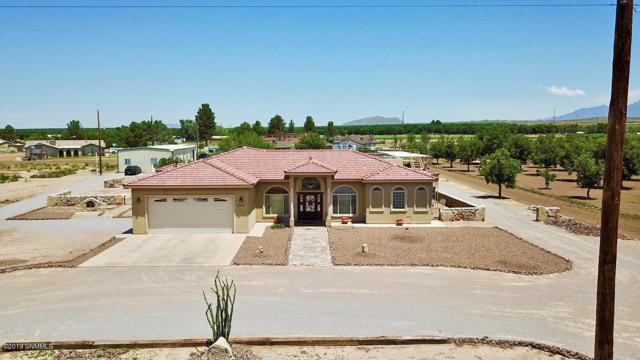 625 E Organ Road, Mesilla Park, NM 88047 (MLS #1902287) :: Steinborn & Associates Real Estate