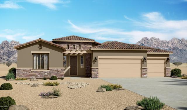 4233 Purple Sage Drive, Las Cruces, NM 88011 (MLS #1902307) :: Steinborn & Associates Real Estate