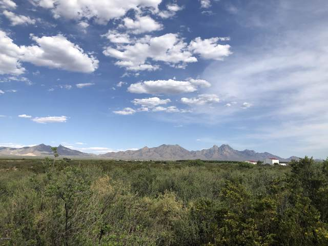 0000 Holman Road, Las Cruces, NM 88012 (MLS #1902314) :: Better Homes and Gardens Real Estate - Steinborn & Associates