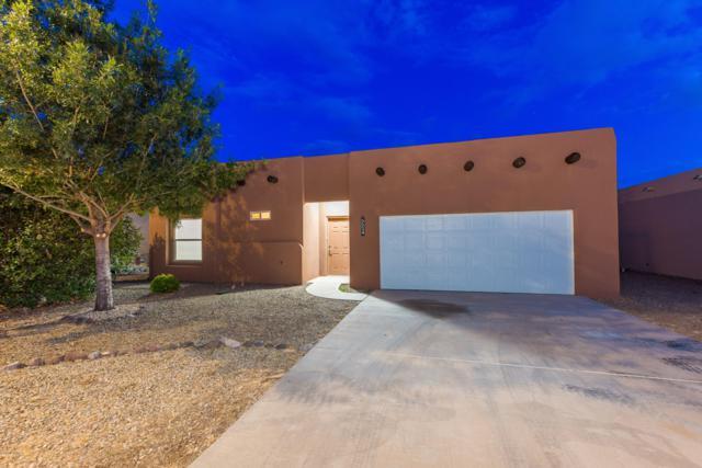 5524 Patagonia Drive, Las Cruces, NM 88011 (MLS #1902315) :: Steinborn & Associates Real Estate