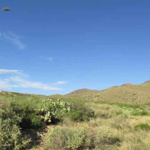 0 Space Mural, Las Cruces, NM 88011 (MLS #1902330) :: Steinborn & Associates Real Estate