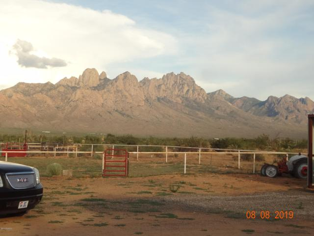 5048 Balsam Road, Las Cruces, NM 88012 (MLS #1902341) :: Steinborn & Associates Real Estate