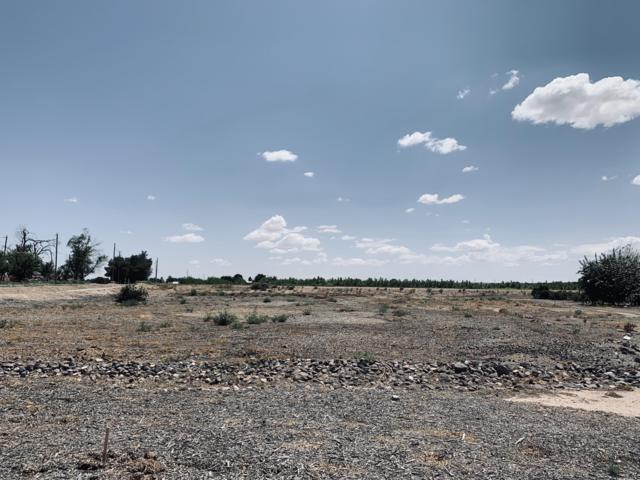 3445 Calle Bedado, Las Cruces, NM 88007 (MLS #1902342) :: Steinborn & Associates Real Estate