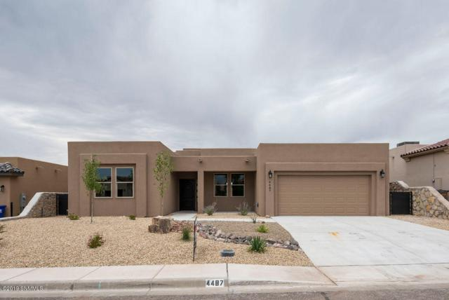 4487 Maricopa Circle, Las Cruces, NM 88011 (MLS #1902369) :: Steinborn & Associates Real Estate