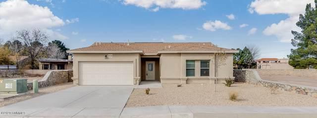 924 Flora Vista, Las Cruces, NM 88007 (MLS #1902513) :: Steinborn & Associates Real Estate