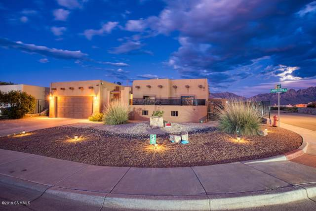 5972 Leaping Lizard Loop, Las Cruces, NM 88012 (MLS #1902689) :: Steinborn & Associates Real Estate