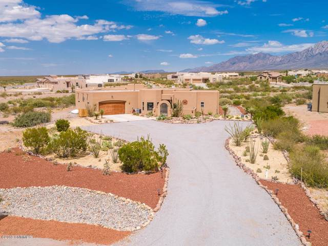 4155 Chia Court, Las Cruces, NM 88011 (MLS #1902691) :: Steinborn & Associates Real Estate