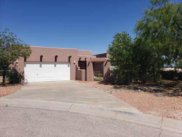 1100 Calle Vista Bella, Las Cruces, NM 88007 (MLS #1902693) :: Steinborn & Associates Real Estate