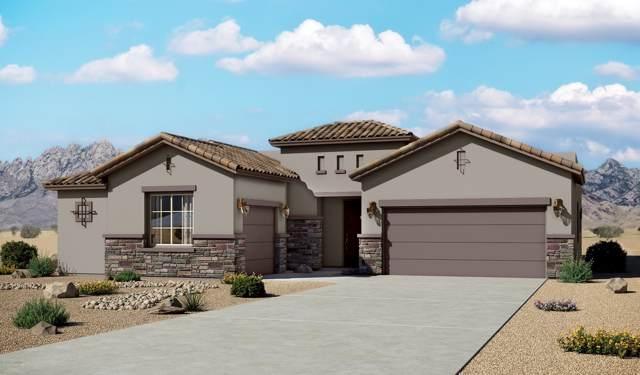 4248 Meadow Sage Drive, Las Cruces, NM 88011 (MLS #1902708) :: Steinborn & Associates Real Estate