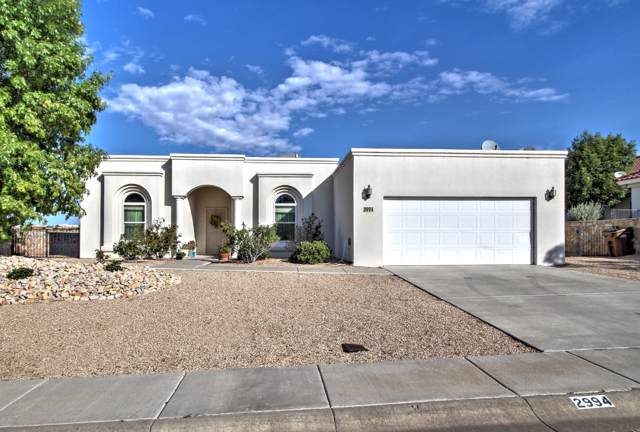2994 Long Bow Loop, Las Cruces, NM 88011 (MLS #1902743) :: Steinborn & Associates Real Estate