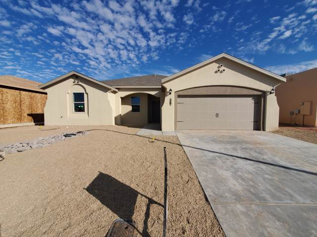 5914 Big Jim Drive, Las Cruces, NM 88012 (MLS #1902752) :: Steinborn & Associates Real Estate