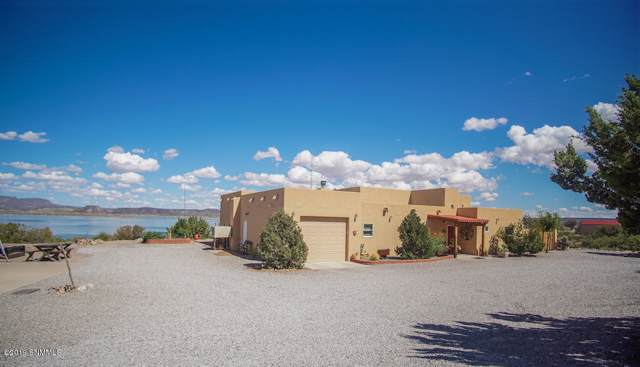 307 Catfish Road Road, Elephant Butte, NM 87935 (MLS #1902767) :: Steinborn & Associates Real Estate