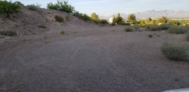 TBD Larkspur Way, Las Cruces, NM 88007 (MLS #1902773) :: Steinborn & Associates Real Estate