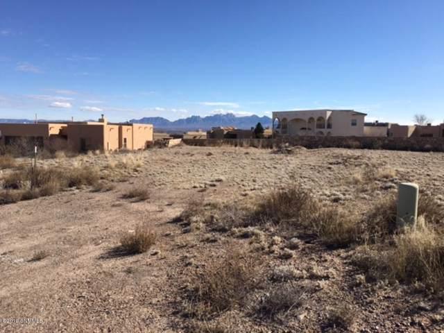 8283 Pissarro Drive, Las Cruces, NM 88007 (MLS #1902790) :: Steinborn & Associates Real Estate