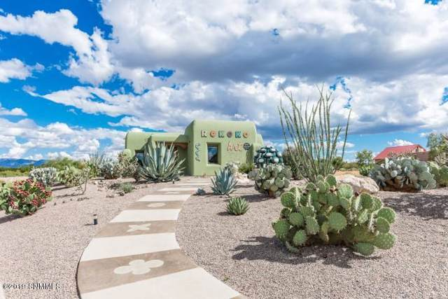 1785 Avenida De Mercado, Mesilla, NM 88046 (MLS #1902799) :: Steinborn & Associates Real Estate