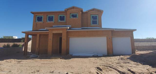 3863 Ringneck Drive, Las Cruces, NM 88001 (MLS #1902808) :: Steinborn & Associates Real Estate